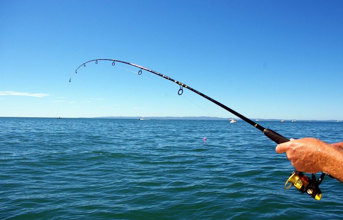Top 5 water sports that even non swimmers can enjoy in dubai for Fishing in dubai