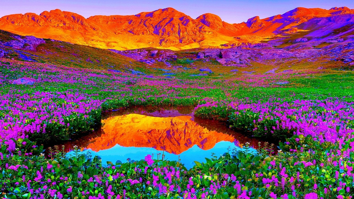 nature colours colorful colors inspiration bow destinations brilliant let